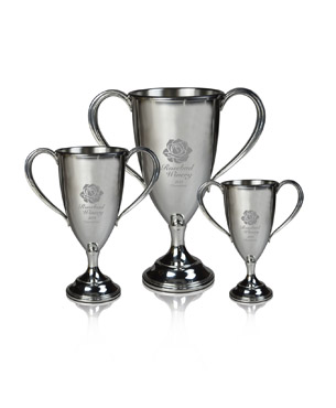 Metal Trophy Cups, BP-29, Pewter Trophy Cup