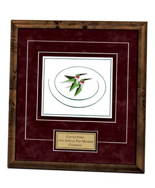 Framed Awards, DILE, Float Mount Printed Award