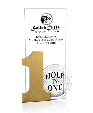 , FS-1004, Acrylic Hole-in-One