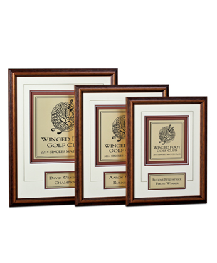 Framed Awards, LE, Large Engraved Award
