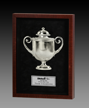 Framed Awards, NMSB001, Standard Creation Shadowbox