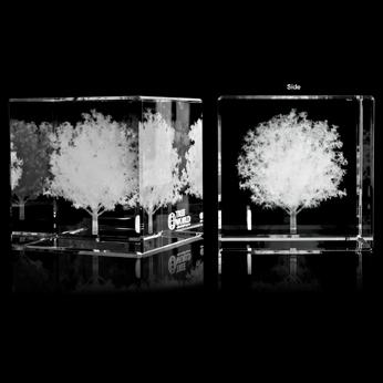 FS-575-M-3D - Crystal Cube