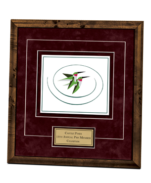 Framed Awards, DILE, Float Mount Printed Award