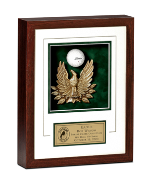 Hole-In-One, EAGLE, Eagle Award