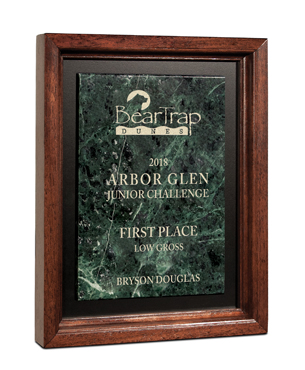 Framed Awards, FS-520, Marble Statesman